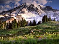 paisaje montaña wallpaper